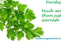 Parsley more than just garnish