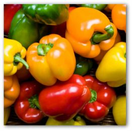 Capsicum or Bell peppers