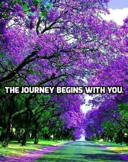 The Journey Begins With You