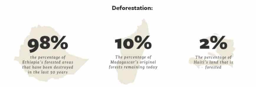 Deforestation percentage via The Eden Reforestation Project