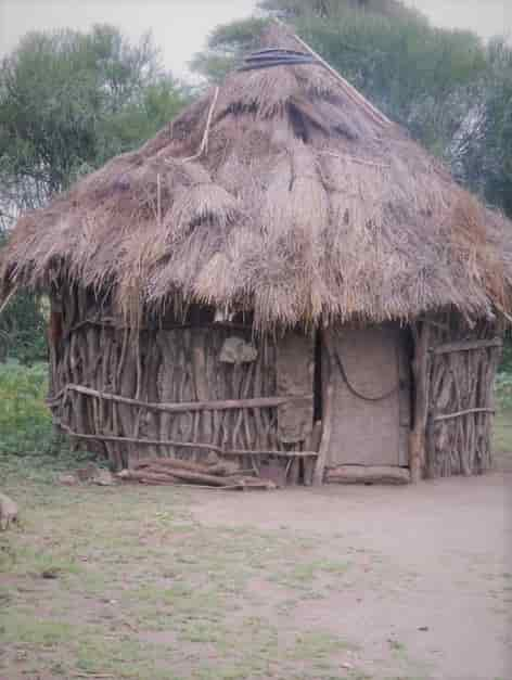 Huts made from Woods from the Forest