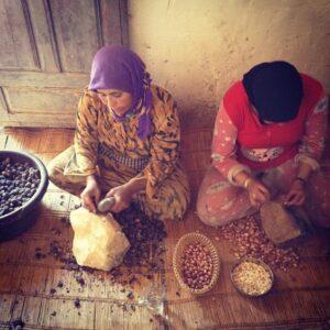 Berber Women Cracking Argan Nuts in Making Argan Oil
