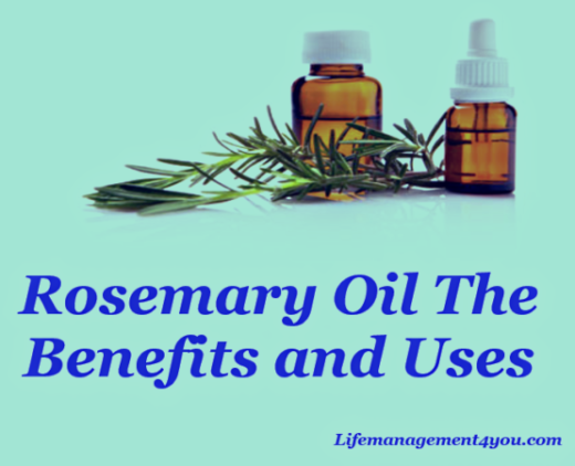 Rosemary OIl The Benefits and Uses